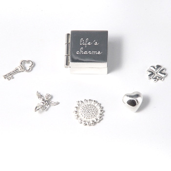 Silver Lifeand#39;s Charms Box