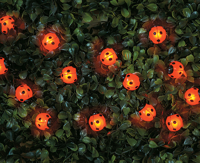 Coccinella luminosa luce da giardino segnapassi o da arredo for 3 stelle arreda