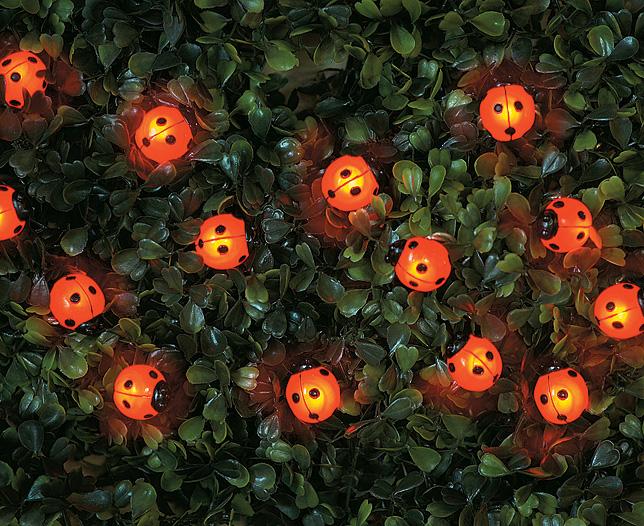 solar Ladybird 15 LED