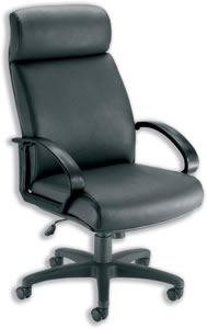 Ithica Armchair Back H700mm