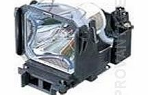 Sony Projector Lamps