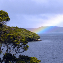 This full day walking tour takes in Stewart Island - CLICK FOR MORE INFORMATION