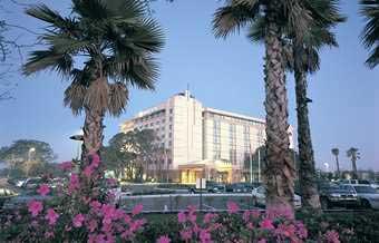 Tampa Cheap Hotels