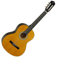 Tanglewood DISC Tanglewood 4/4 Classical Acoustic Guitar Pack product image