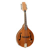Tanglewood TMAS E Electric Mandolin (Natural