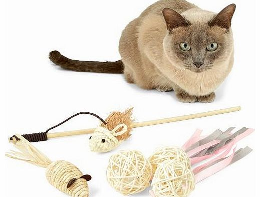 The Natural Pet Company Cat Toys Megapack - 1 x Interactive Catnip / Feather Toy On A Stick, 3 x Wicker Bell Balls, 1 x Hand