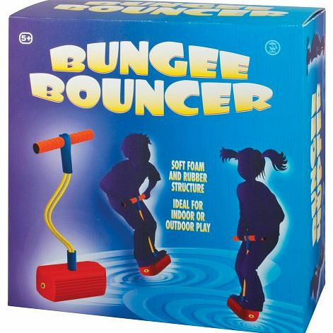 Bungee Bouncer - CLICK FOR MORE INFORMATION