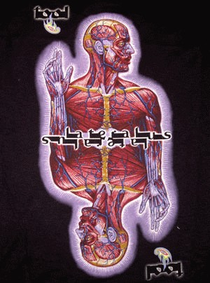 Lateralus T Shirt