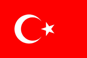 Turkey paper flag, 11