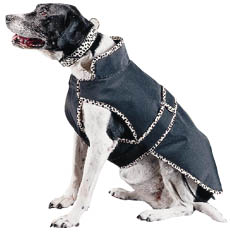 """Helsinki"" Dog Coat - 30"" product image"