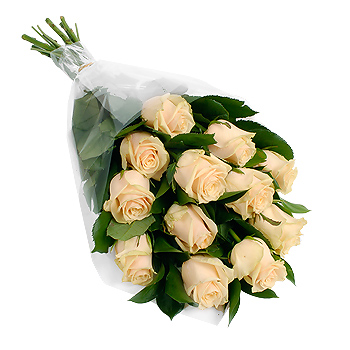 12 peach roses giftwrap   flowers   review  pare prices buy online