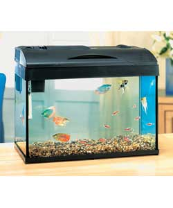 20 gallon fish tank in litres hi all i am new to the world of marine fish keeping i try my. Black Bedroom Furniture Sets. Home Design Ideas