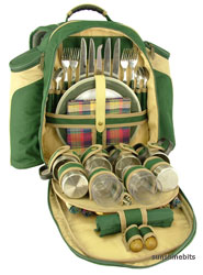 Unbranded Azur Green Picnic Backpack-4 Person