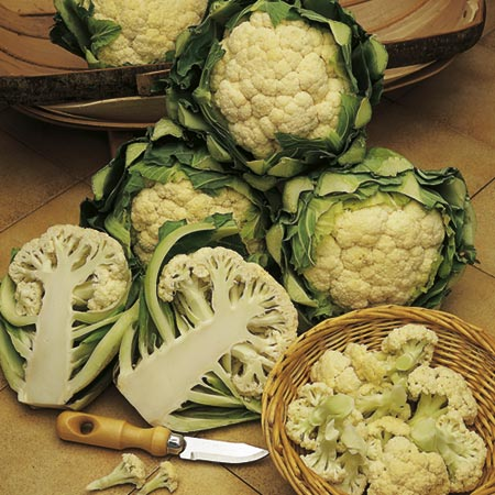 Unbranded Cauliflower All The Year Round Seeds Average