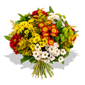 Chrysanthemum Bouquet - flowers - review, compare prices ...