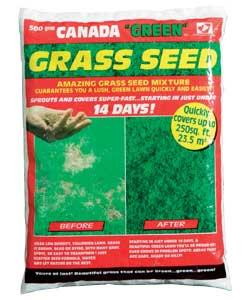 Unbranded Grass Seed