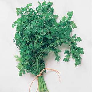 Vegetables cheap prices , reviews , uk delivery , compare prices