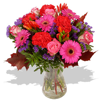 Alert Link to This Page More Unbranded Flowers and Flower DeliveryPaprika Flower