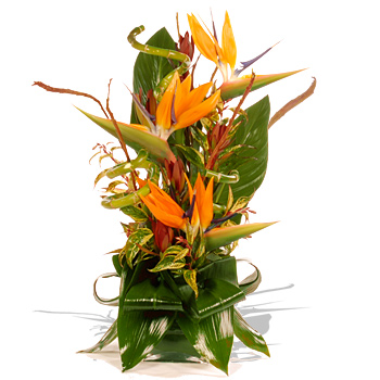 Exotic Flower Arrangements on Alert Link To This Page More Unbranded Flowers And Flower Delivery