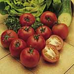 Unbranded Tomato Alicante Seeds