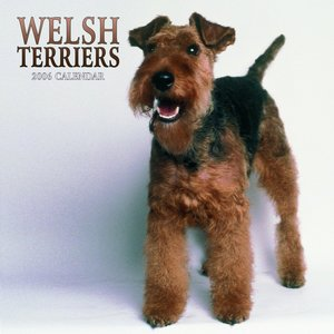 Welsh Terrier Calendar