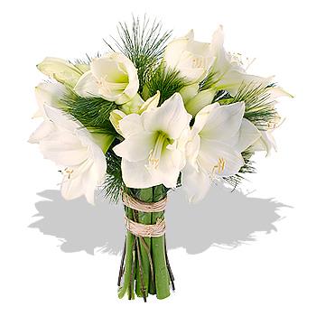 White amaryllis bouquet flowers review compare prices for Fleurs amaryllis bouquet