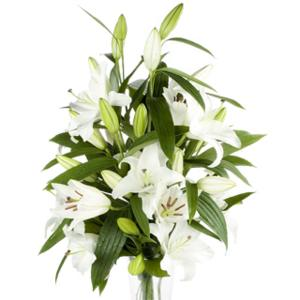 Unbranded White Oriental Lilies