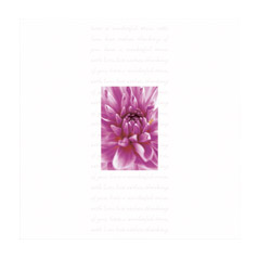With Love And Best Wishes Card - CLICK FOR MORE INFORMATION