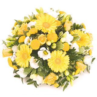 http://www.comparestoreprices.co.uk/images/unbranded/y/unbranded-yellow-posy.jpg