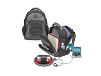 The Synergy 15.4 Computer Backpack