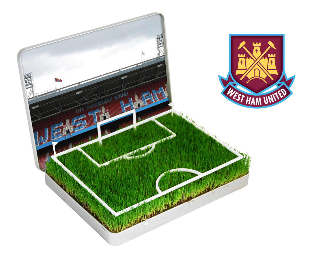West Ham  Grow Your Own West Ham Upton Park Pitch product image