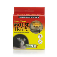 The Big Cheese Mouse Traps x 2
